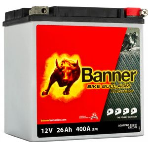 YTX30L-BS Compatible Banner Bike Bull AGM PROfessional Battery (53001)