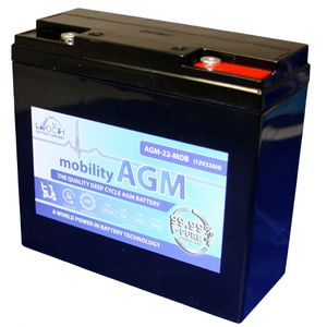 Leoch AGM 22 Mobility Battery 12V 22Ah
