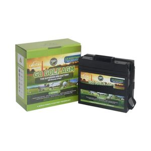 Leoch LG-A250 Tbar Supreme AGM Golf Battery 12V 22Ah