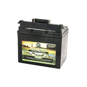 Leoch LG-C280 Tbar AGM Golf Battery 12V 38Ah