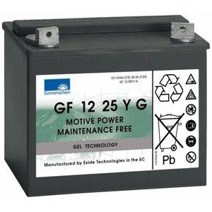 GF12025YG Sonnenschein Battery (GF1225YG / GF 12 25 Y G)