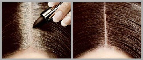 Cover Your Gray Touch Up Stick - 4.2g,Dark Brown