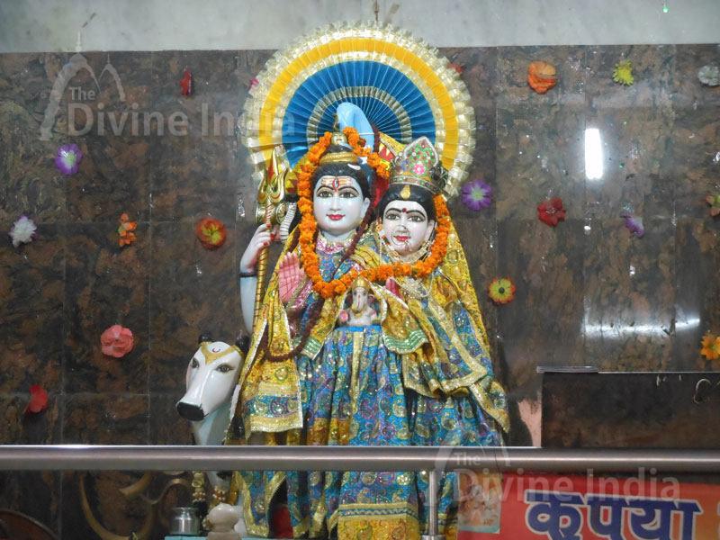 Lord Shiva Idol at Shiv Mandir Gufawala-preet vihar