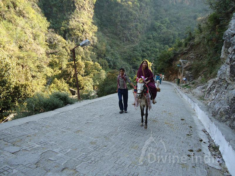 Main Track of Shiv Khori Yatra
