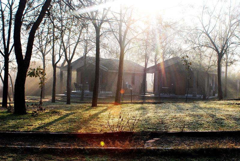 Sun Rise Scene