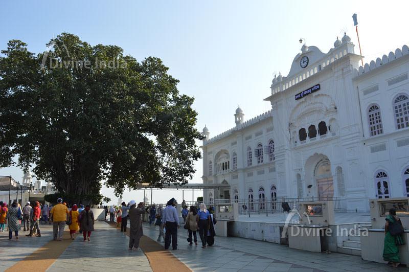 with tree front view of anandpur sabhi gurdwara