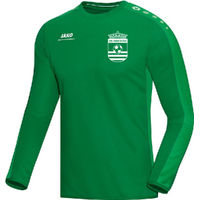 Jako Striker Sweater - Groen