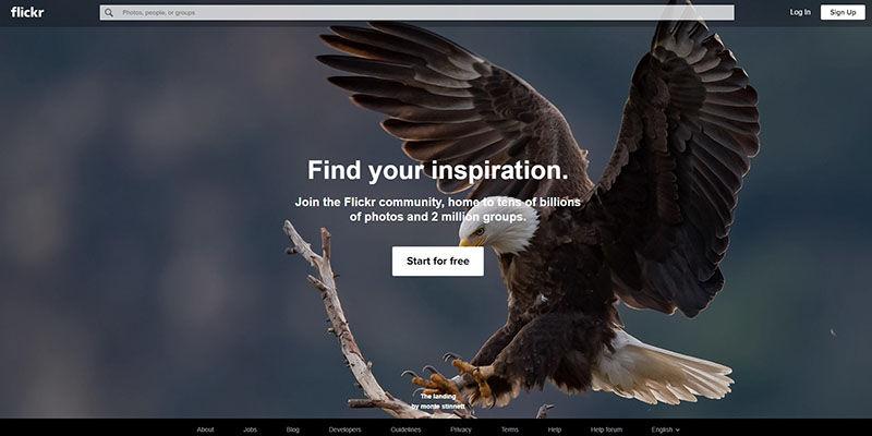 Flickr stock photos website