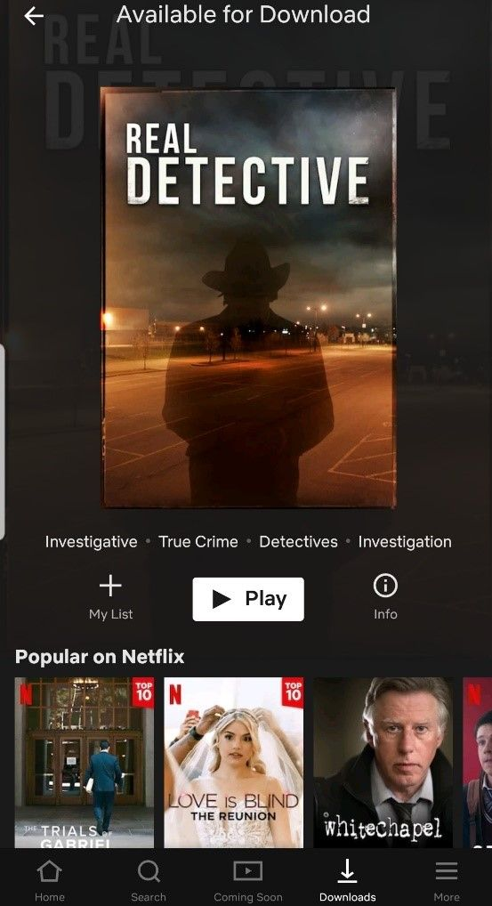 Netflix video download