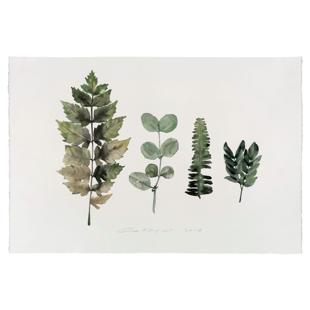 Lot 35: Painting is Collecting-Plants No. 18