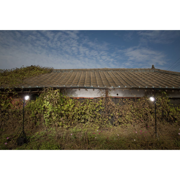 Lot 43: The Grass Covered House