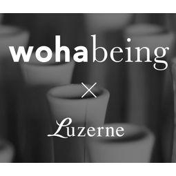 wohabeing x Luzerne