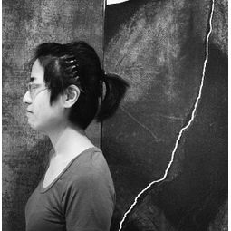 Jin Jinghua (金京华)