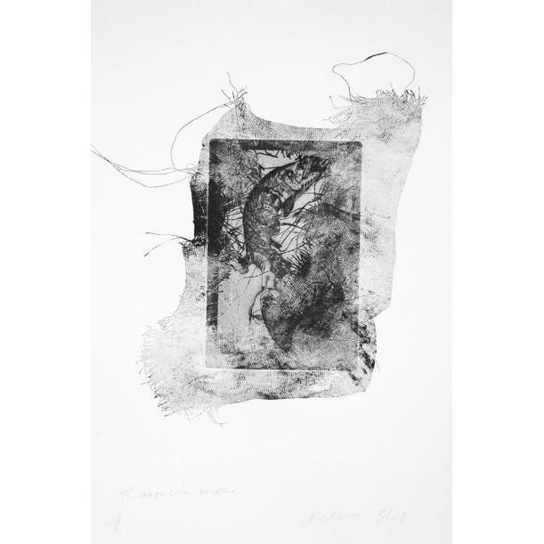The exquisite corpse by Nastaran Shahbazi