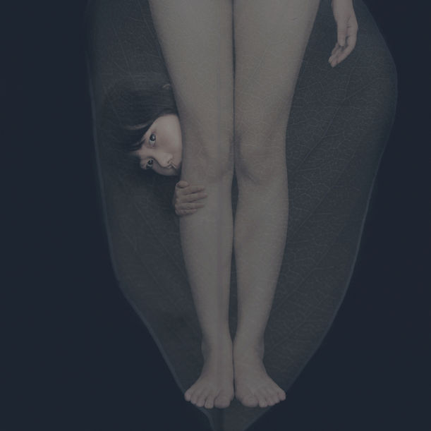 Timidity by Ahn Sun Mi
