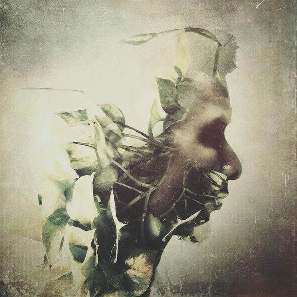 Agro by Ade Santora