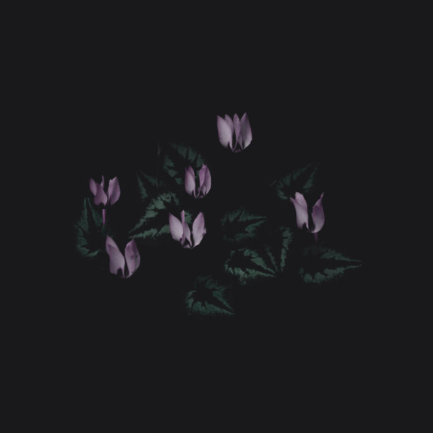 Waiting To Fade #3 by Mehran Naghshbandi