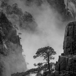 Huangshan Untitled 2 by Bonbon Wang
