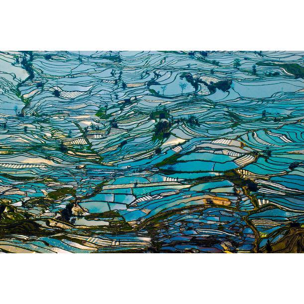 Nature's Van Gogh Morning Blue by Bonbon Wang