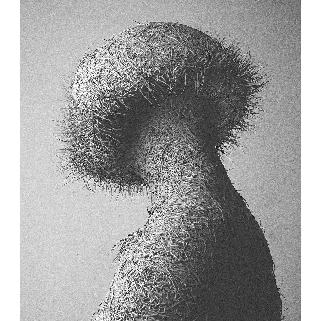 Fur III: Variations II by Can Pekdemir
