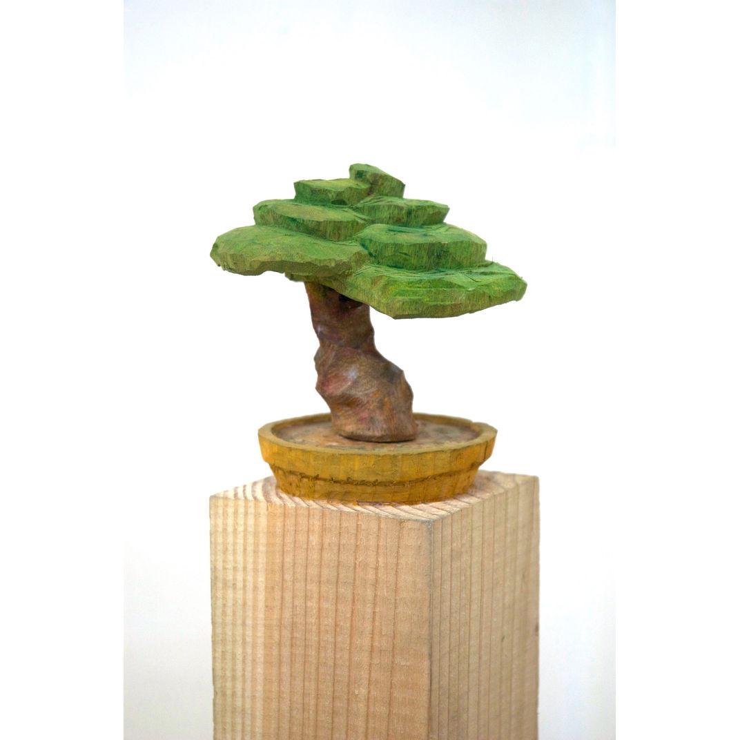 Bonsai 2 by Yuto Yamasaki