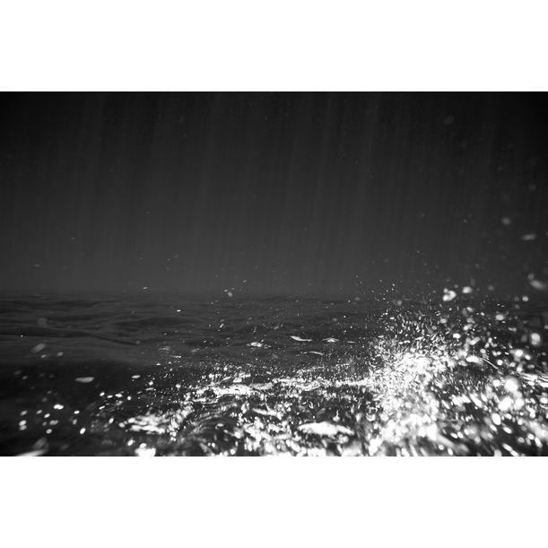 Glistening Twigs Undersea by Emma Critchley & Genevieve Chua