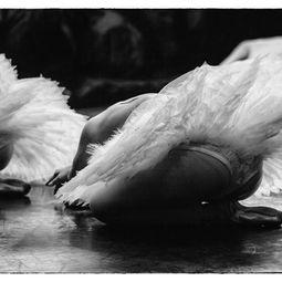 Dancers #4 by Sean Lee Davies