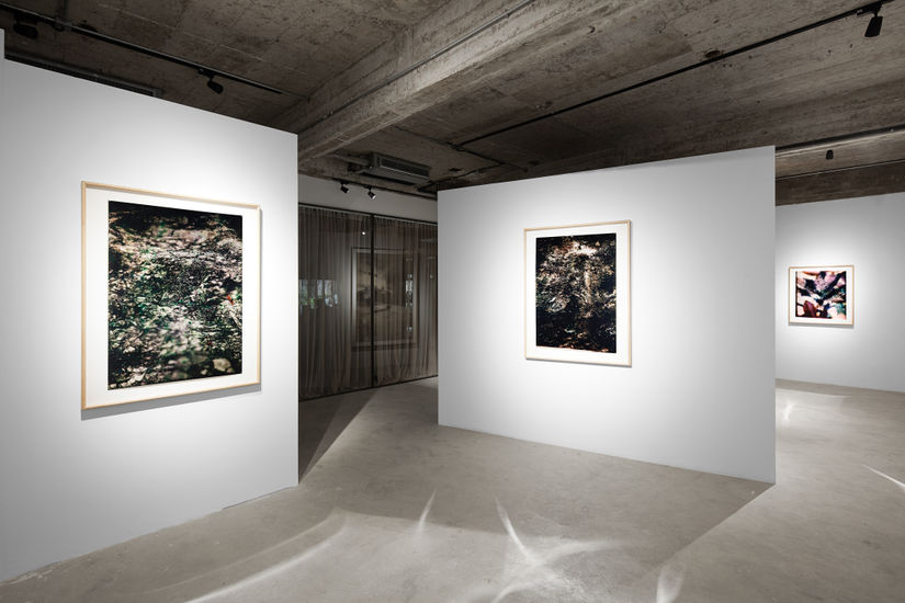 The Artling and Studio Gallery Present 'Re-en-vision' by Simon Song