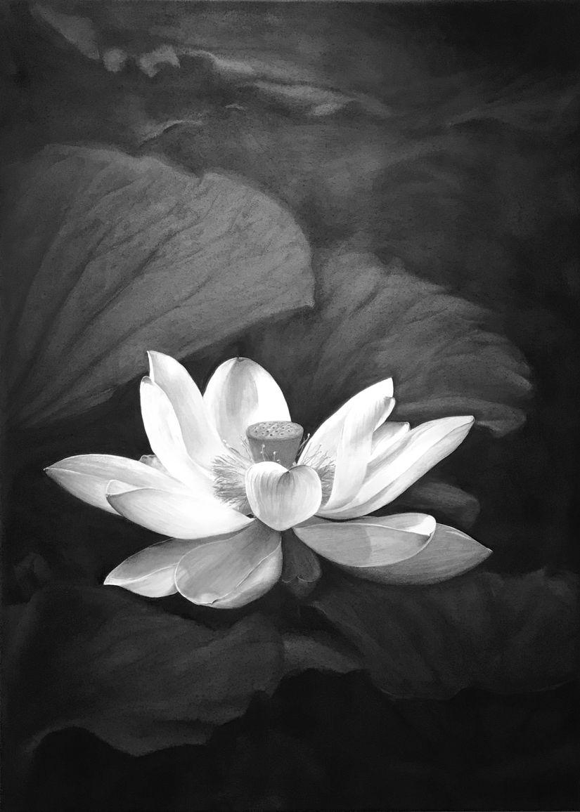 Serenity - Liu Ling