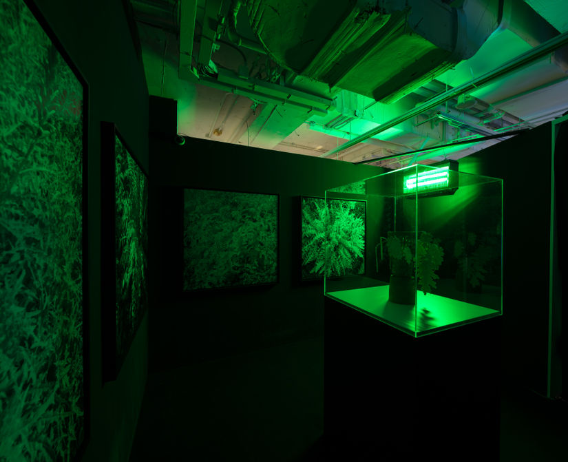 Negotiating Space in 'Emerald City': Geometric Reflections at K11 Art Foundation, Hong Kong
