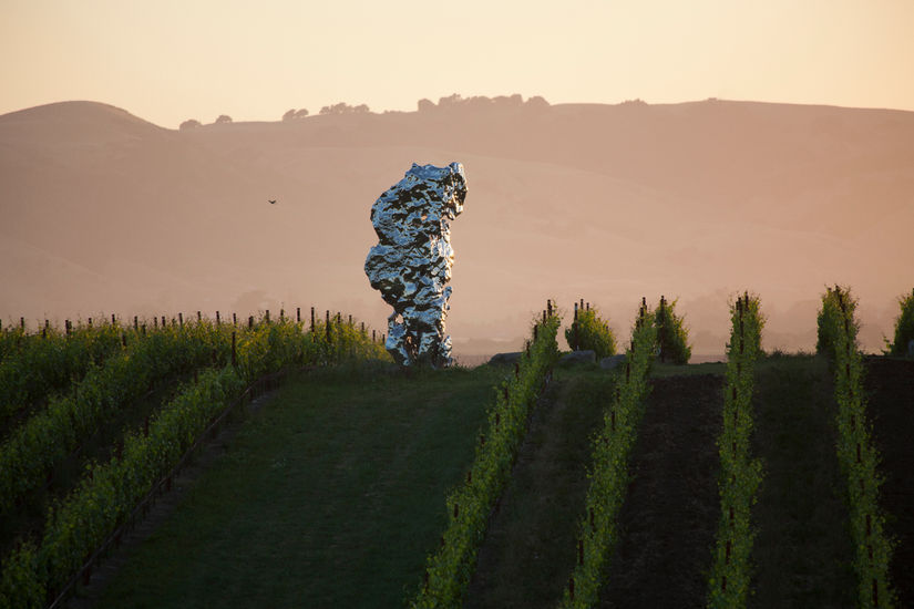 Full-Bodied Art: Vineyards by Art Lovers