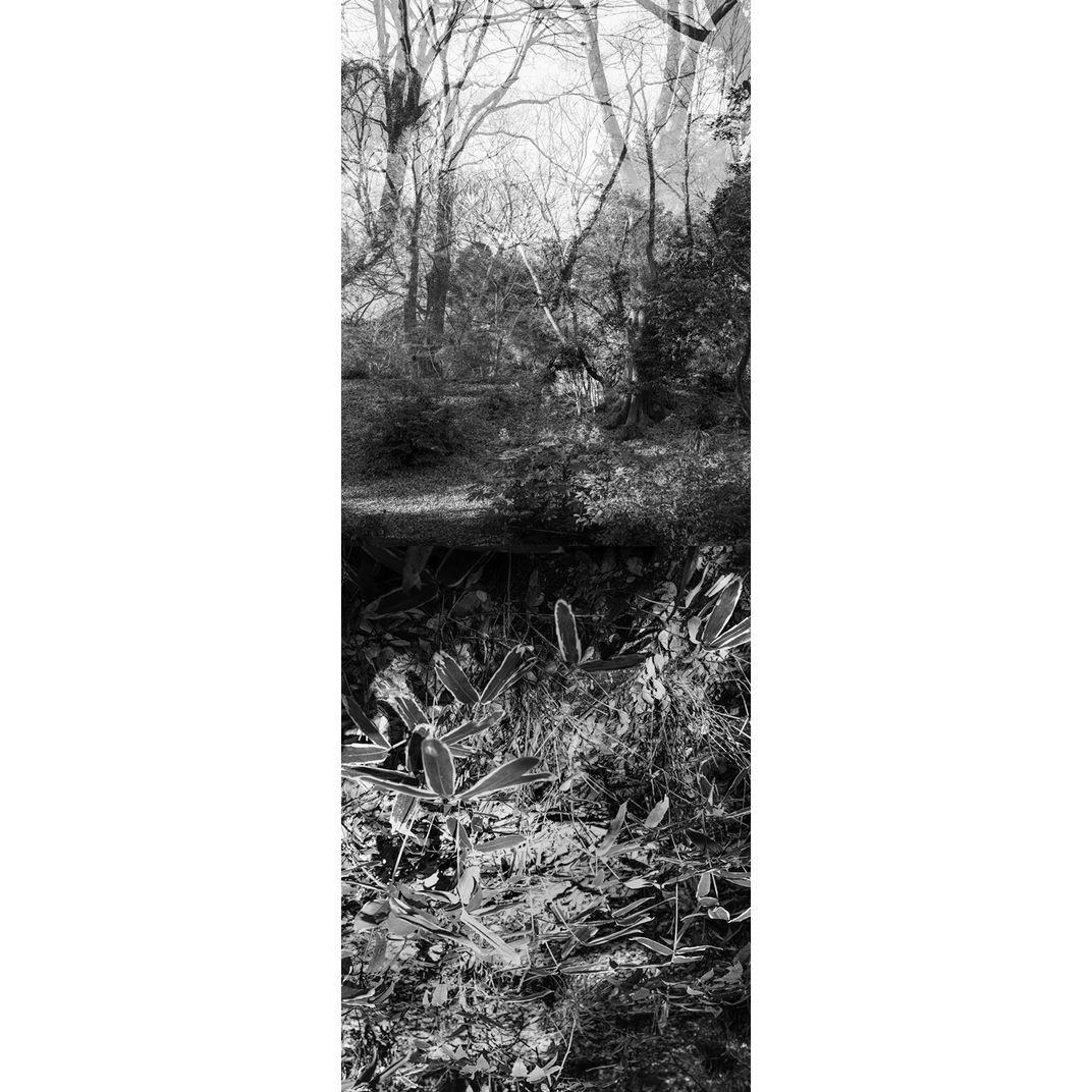 Reflecting landscape 02 by Yasuo Kiyonaga