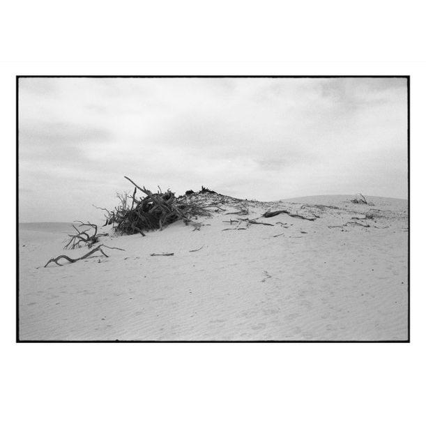 Mungo National Park #2 by Damian Seagar