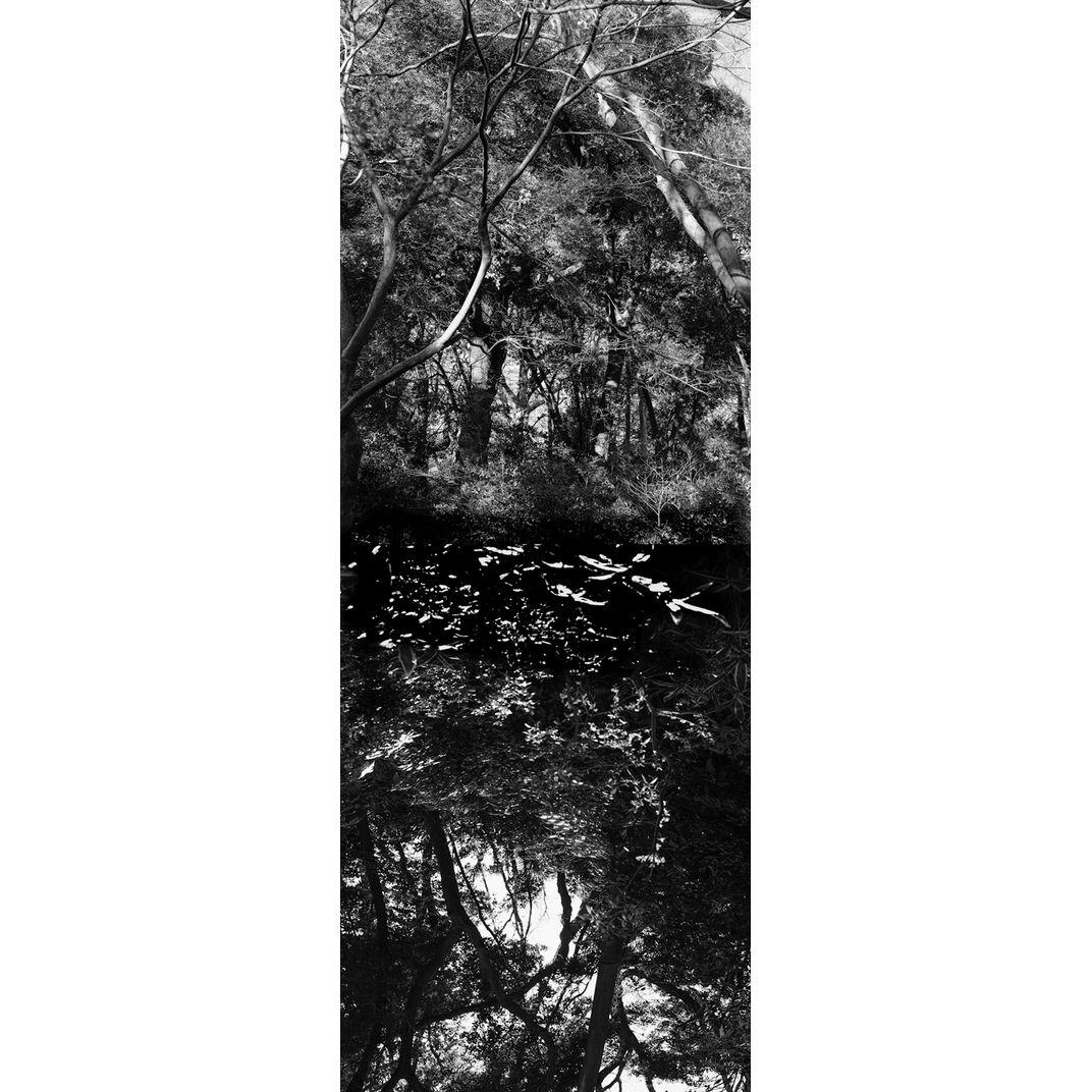 Reflecting landscape 10 by Yasuo Kiyonaga