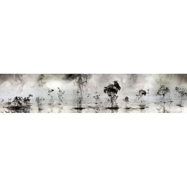 Mushrooms and Trees 1 by Van Chu