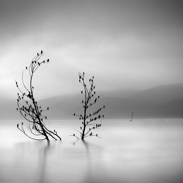Ode to Joy by George Digalakis