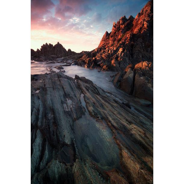 Coastal Sway by Serena Dzenis