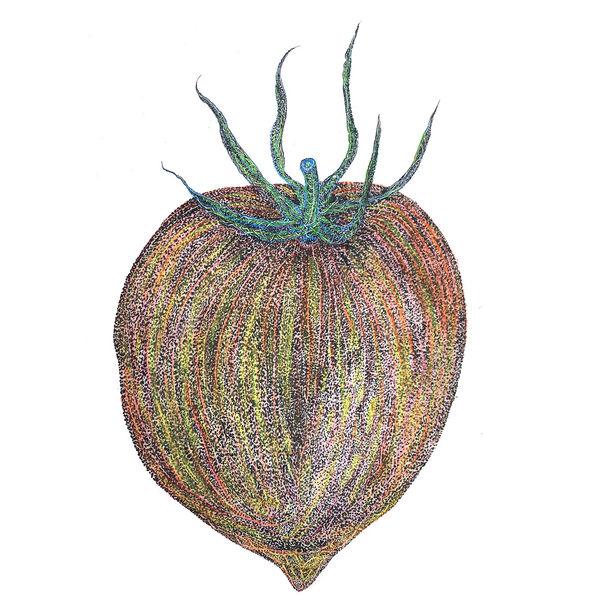 WfH Series - Miss Tomato by Lui Fung Ngar, Eddie