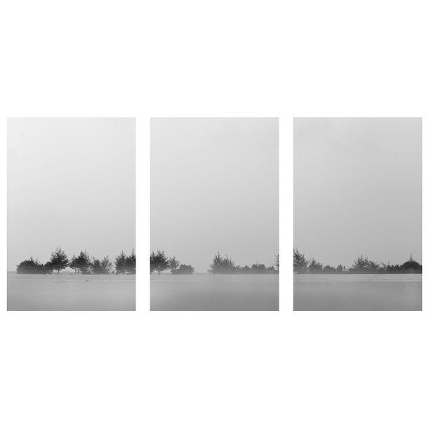 Revelare #04 by Yon Beni