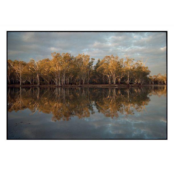 Murray River, Torramburry #2 by Damian Seagar