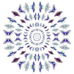 Winged rings by Sumit Mehndiratta