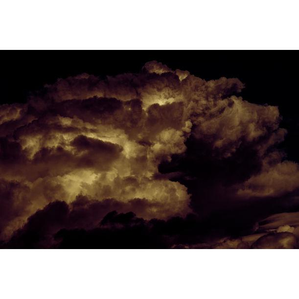 Sky Pig by Stephen S T Bradley