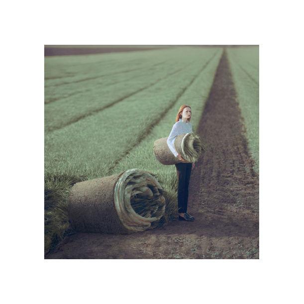 field by Oleg Oprisco