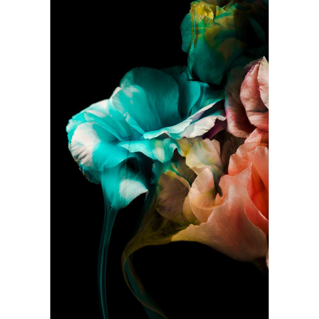 Tainted Love by Javiera Estrada