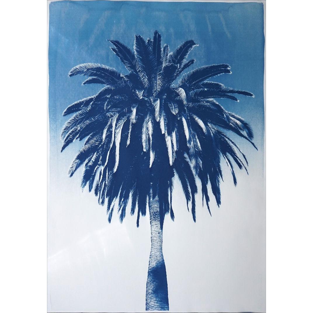 Marrakesh Majorelle Palm by Kind of Cyan
