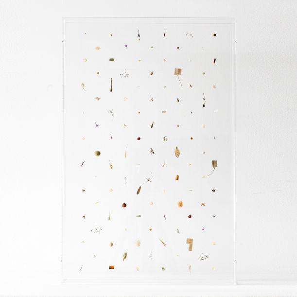 Untitled by Norihiko Terayama