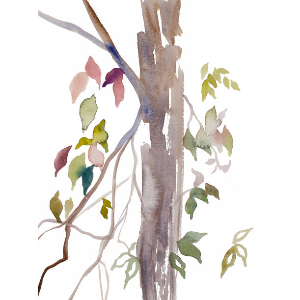 The Woods No. 120 by Elizabeth Becker