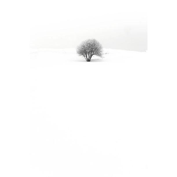 Winter_Series #5 by Lee Byoung Kon