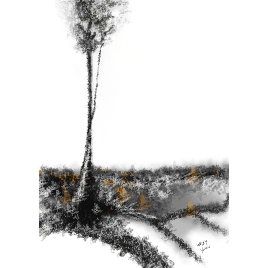 Lone tree by Tan Kah Wah