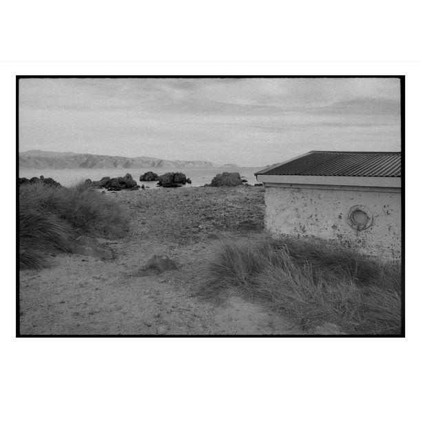 Wellington Coastline by Damian Seagar